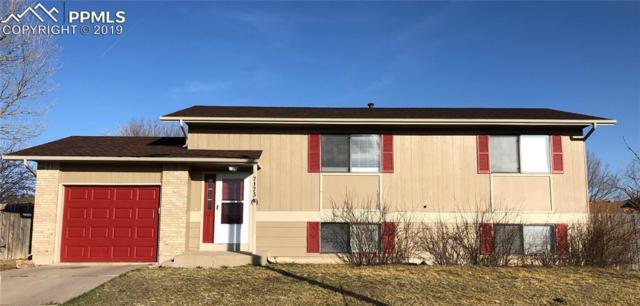 7175 Woodstock Street, Colorado Springs, CO 80911 (#1039376) :: The Treasure Davis Team