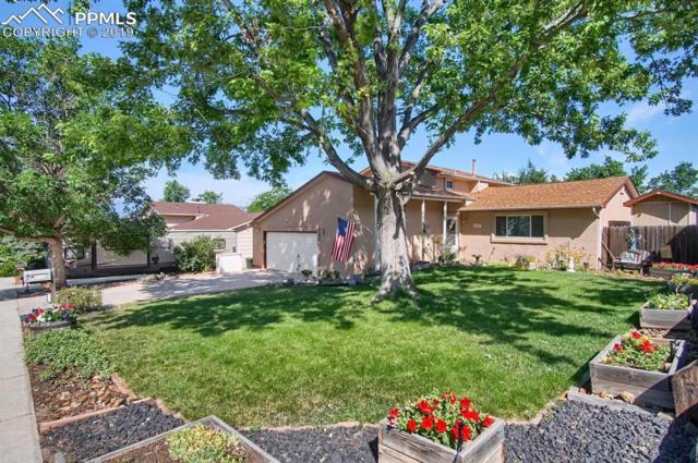 2958 Buttermilk Circle, Colorado Springs, CO 80918 (#1039784) :: HomePopper