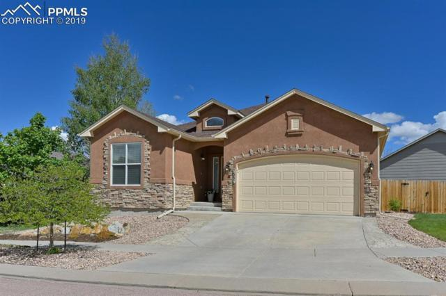 7557 Amberly Drive, Colorado Springs, CO 80923 (#1039960) :: The Daniels Team