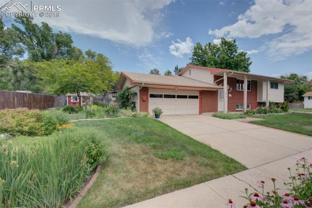 1367 Mears Drive, Colorado Springs, CO 80915 (#1047104) :: Tommy Daly Home Team