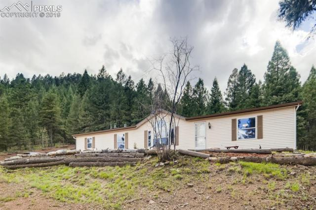 810 W Highway 24 Highway, Woodland Park, CO 80863 (#1047586) :: The Peak Properties Group