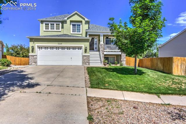 6640 Balance Circle, Colorado Springs, CO 80923 (#1048943) :: The Daniels Team