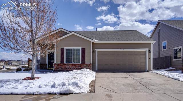 5490 Suffolk Avenue, Castle Rock, CO 80104 (#1054029) :: The Treasure Davis Team