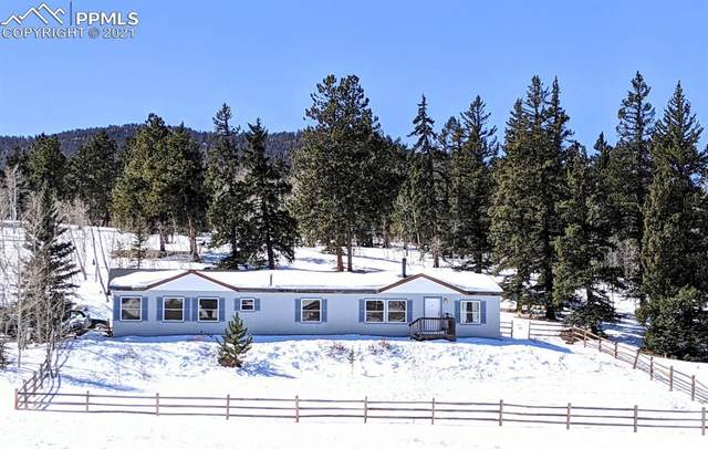 2604 Singletree Road, Hartsel, CO 80449 (#1055263) :: 8z Real Estate