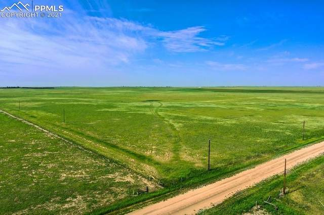 37675 Fossinger Road, Rush, CO 80833 (#1056971) :: Compass Colorado Realty