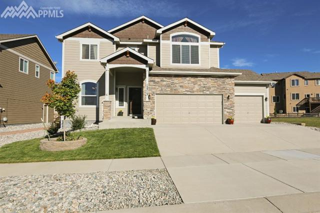 12213 Bandon Drive, Colorado Springs, CO 80921 (#1063279) :: 8z Real Estate