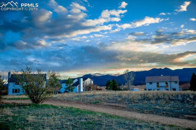 14124 Stone Eagle Place, Colorado Springs, CO 80921 (#1065469) :: Fisk Team, RE/MAX Properties, Inc.