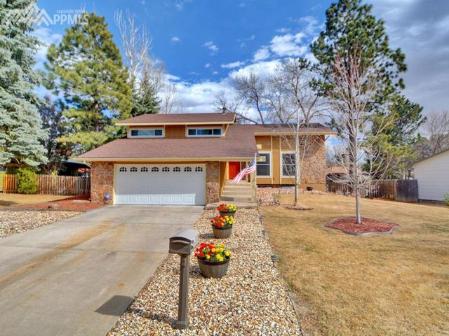 3105 Meander Circle, Colorado Springs, CO 80917 (#1066308) :: The Peak Properties Group