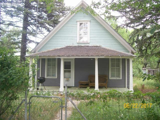 107 S Commercial Street, Ramah, CO 80832 (#1066417) :: 8z Real Estate