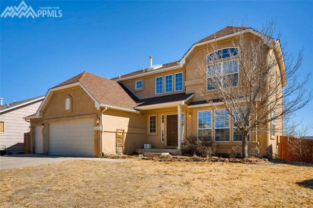 8220 Gladwater Road, Falcon, CO 80831 (#1067149) :: The Daniels Team