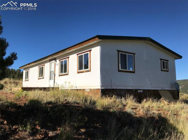 2115 Teller 1 Road, Cripple Creek, CO 80813 (#1074216) :: CENTURY 21 Curbow Realty