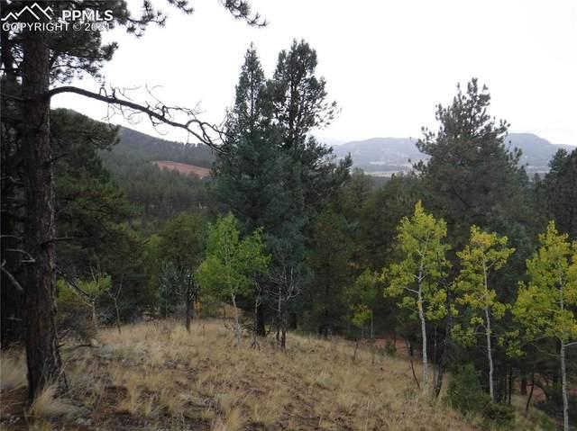 186 Alpine Drive, Cripple Creek, CO 80813 (#1075816) :: The Treasure Davis Team | eXp Realty