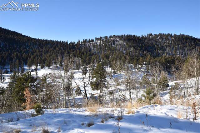 46 Dexter Circle, Cripple Creek, CO 80813 (#1079263) :: Tommy Daly Home Team