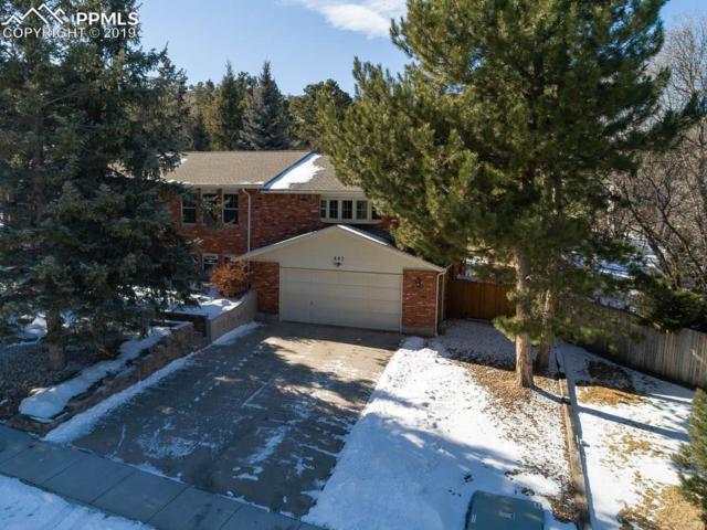 685 Carved Terrace, Colorado Springs, CO 80919 (#1086969) :: 8z Real Estate