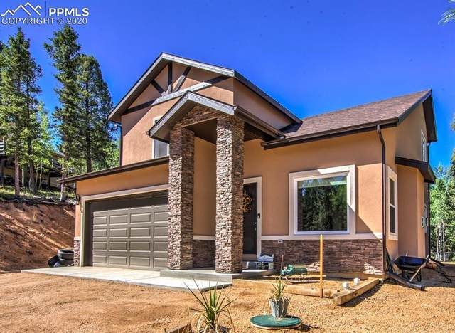 71 Mt. Elbert Drive, Divide, CO 80814 (#1087349) :: Action Team Realty