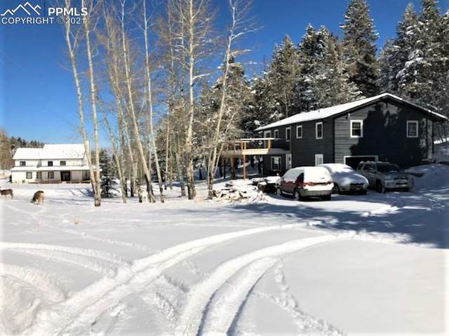6910 Brook Forest Drive, Evergreen, CO 80439 (#1087719) :: HomeSmart