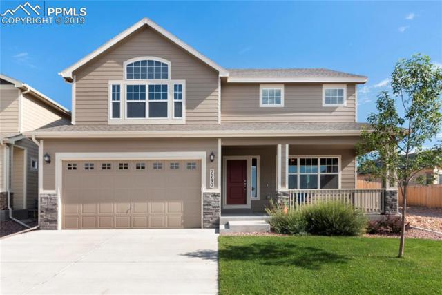 7790 Wagonwood Place, Colorado Springs, CO 80908 (#1090164) :: Action Team Realty