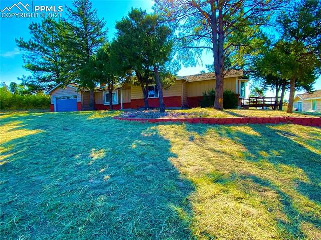 6760 Pine Lane, Parker, CO 80138 (#1094153) :: Tommy Daly Home Team
