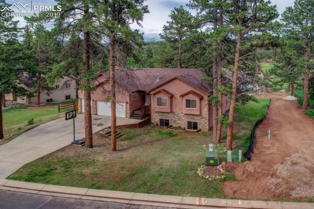 1373 Masters Drive, Woodland Park, CO 80863 (#1094743) :: The Dixon Group