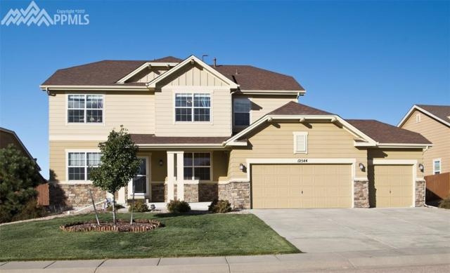 12544 Angelina Drive, Falcon, CO 80831 (#1095252) :: The Treasure Davis Team