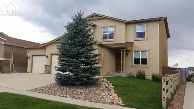 7976 Mount Hayden Drive, Colorado Springs, CO 80924 (#1097012) :: The Treasure Davis Team