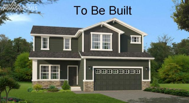 1714 Sandy Shore Lane, Monument, CO 80132 (#1107399) :: 8z Real Estate
