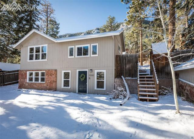 10285 Mountain Lane, Green Mountain Falls, CO 80819 (#1107826) :: The Peak Properties Group
