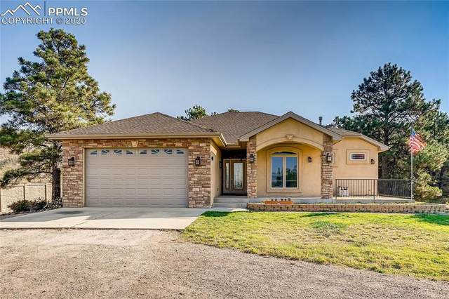 1418 Piney Hill Point, Monument, CO 80132 (#1108659) :: Tommy Daly Home Team