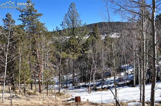 682 May Queen Drive, Cripple Creek, CO 80813 (#1111143) :: 8z Real Estate