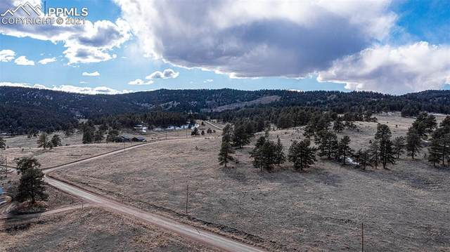 773 County Road 71 Road, Florissant, CO 80816 (#1112670) :: Action Team Realty