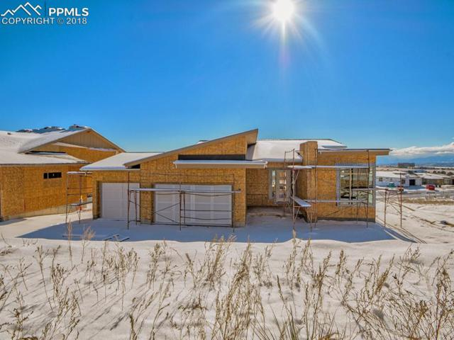 1240 Count Fleet Court, Colorado Springs, CO 80921 (#1114501) :: The Treasure Davis Team