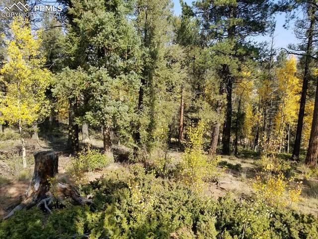 912 Derby Drive, Cripple Creek, CO 80813 (#1115905) :: The Treasure Davis Team