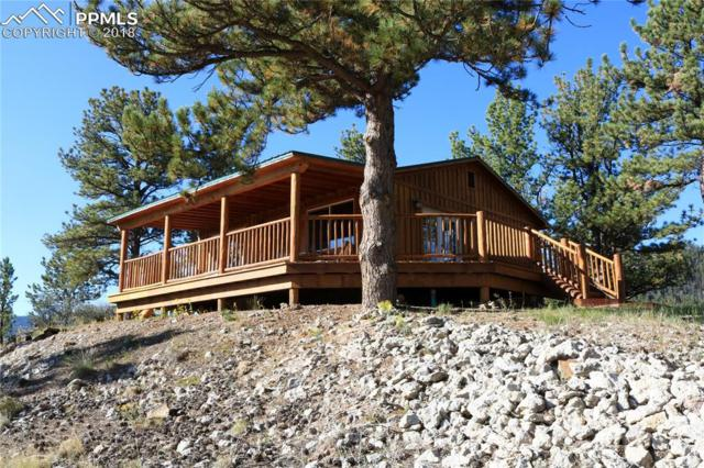 70 Elk Circle, Guffey, CO 80820 (#1116450) :: Action Team Realty