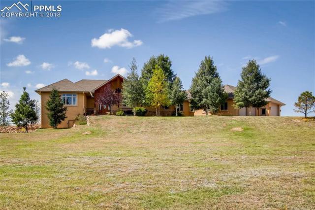 16850 Bar X Road, Colorado Springs, CO 80908 (#1116746) :: Colorado Home Finder Realty