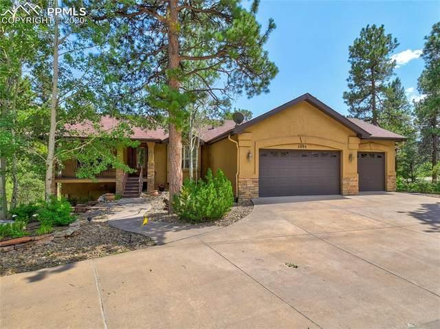 5005 Chipita Pines Drive, Cascade, CO 80809 (#1122891) :: CC Signature Group