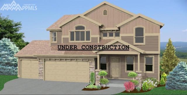 6331 Anders Ridge Lane, Colorado Springs, CO 80923 (#1123304) :: The Daniels Team
