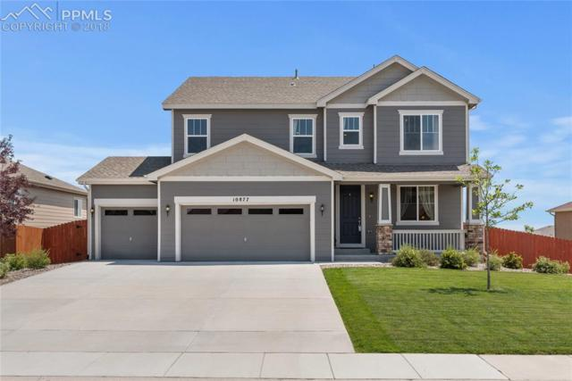 10877 Mt. Evans Drive, Peyton, CO 80831 (#1125852) :: The Treasure Davis Team