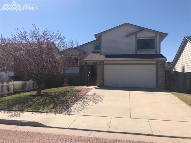 5060 Pathfinder Drive, Colorado Springs, CO 80911 (#1129941) :: RE/MAX Advantage