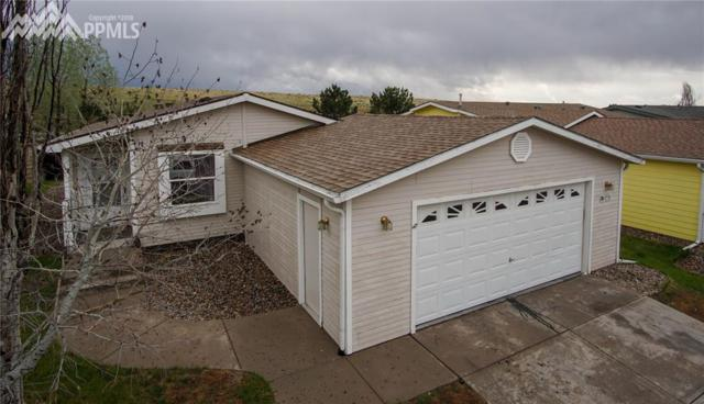 4596 Gray Fox Heights, Colorado Springs, CO 80922 (#1130345) :: 8z Real Estate