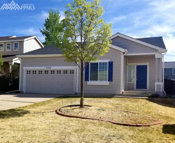 7543 Greenough Road, Peyton, CO 80831 (#1131039) :: 8z Real Estate