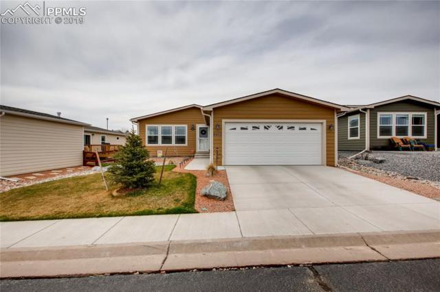 4413 Gray Fox Heights, Colorado Springs, CO 80922 (#1134673) :: Colorado Home Finder Realty