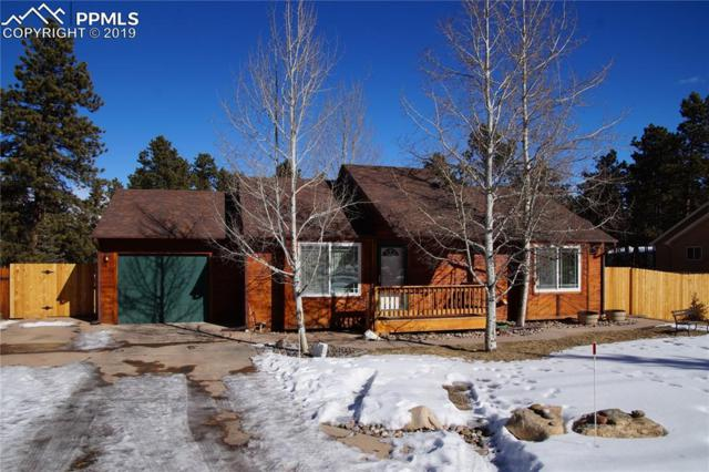 520 County Road, Woodland Park, CO 80863 (#1135866) :: 8z Real Estate