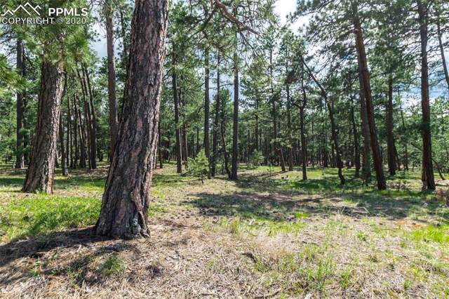 19124 Hilltop Pines Path, Monument, CO 80132 (#1148315) :: Action Team Realty