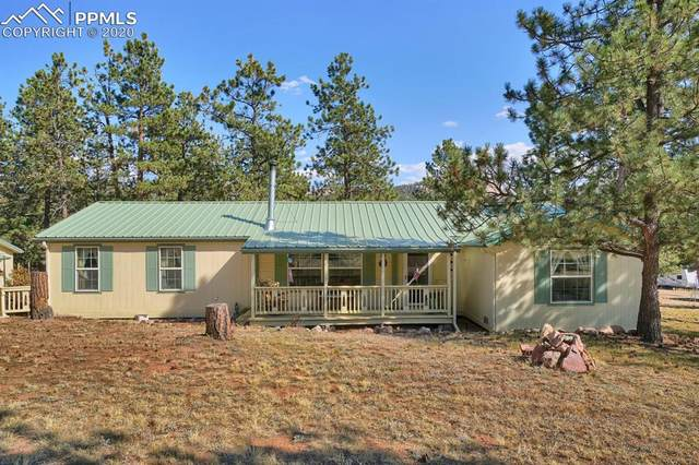 966 Hackamore Drive, Florissant, CO 80816 (#1149040) :: The Treasure Davis Team