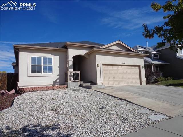 7506 Steward Lane, Colorado Springs, CO 80922 (#1155167) :: 8z Real Estate