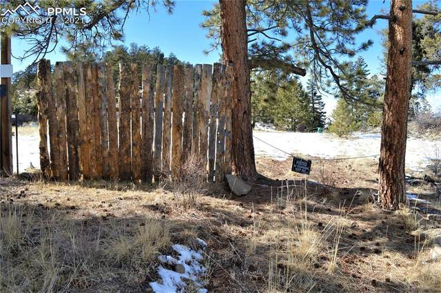 Lot 10 Spring Canyon Road, Cripple Creek, CO 80813 (#1160822) :: The Gold Medal Team with RE/MAX Properties, Inc