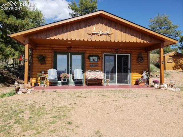 188 Sioux Circle, Florissant, CO 80816 (#1161548) :: 8z Real Estate
