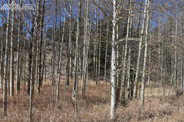 99 Cheyenne Trail, Lake George, CO 80827 (#1162438) :: RE/MAX Advantage