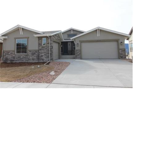 12514 Pensador Drive, Colorado Springs, CO 80921 (#1169565) :: Jason Daniels & Associates at RE/MAX Millennium