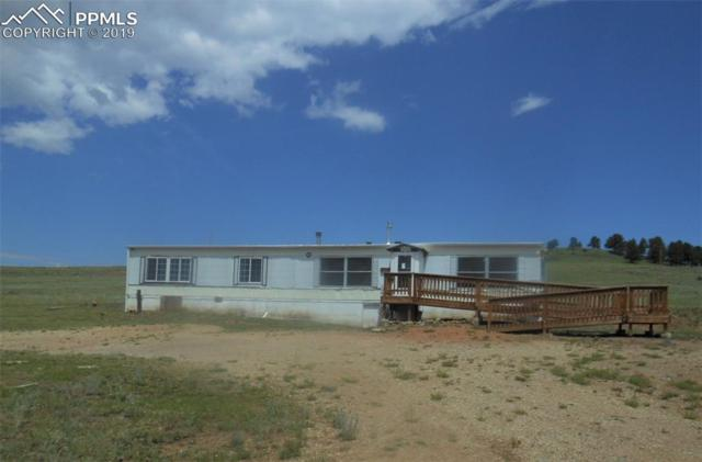 1620 County 1 Road, Cripple Creek, CO 80813 (#1169906) :: Jason Daniels & Associates at RE/MAX Millennium